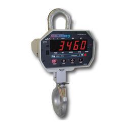 Msi Measurement Systems International Crane Scales