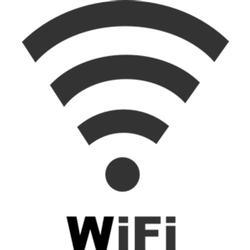 Rice Lake 108671 Wireless LAN card Wi-Fi 802.11 A/B for CW-90 and CW90X