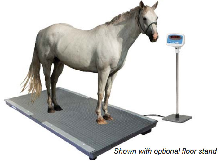 Salter Brecknell Ps 3000hd Floor Scale Veterinary Scale