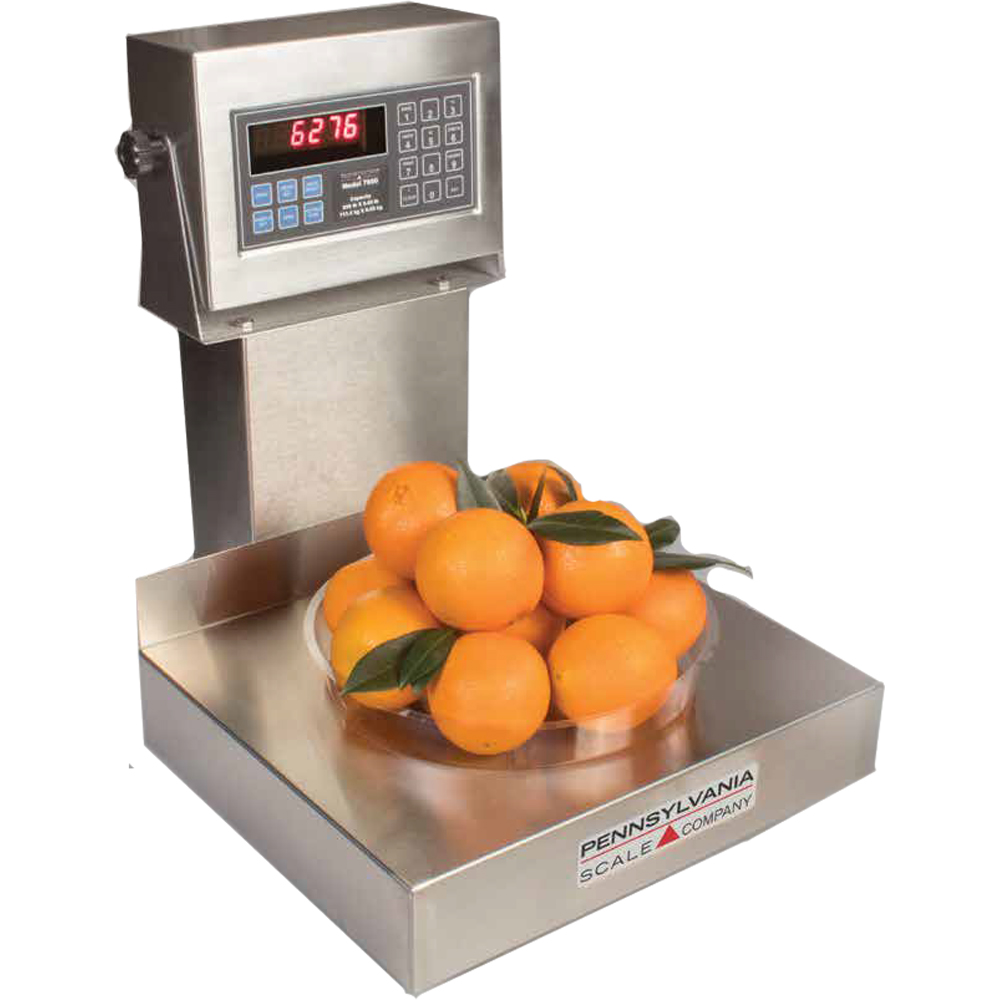 Pennsylvania Scale 6200 Legal for Trade Checkweigher & Bench-Scale Scales