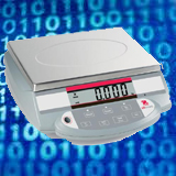 Top Brand of Digital Scales